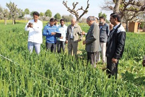 3 --- Intraction with agri experts